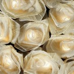 Rose Lights in Antique Cream – mains and battery!